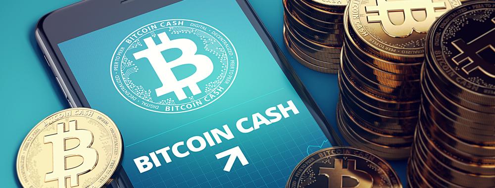 bitcoin cash banner shimbun