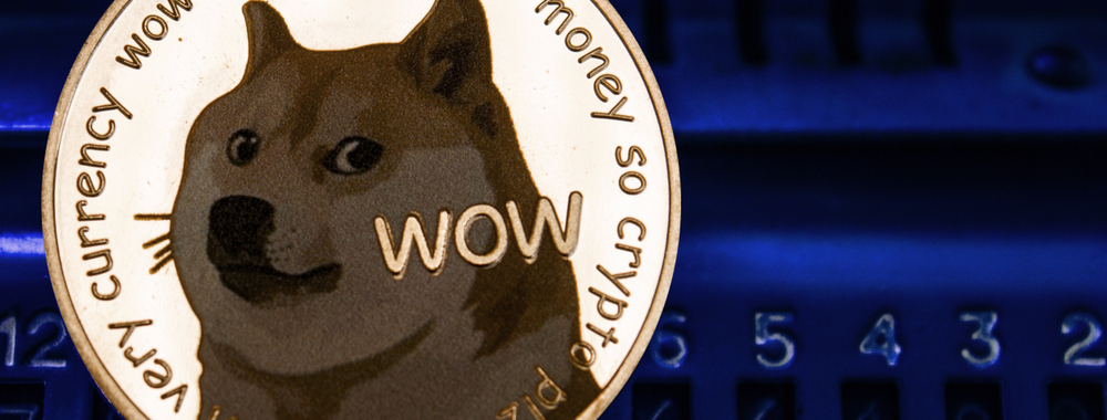 whale doge coin banner